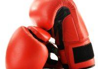 Boxing Insurance Broker