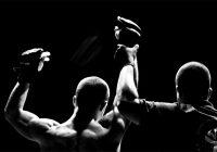 MMA Insurance in Australia